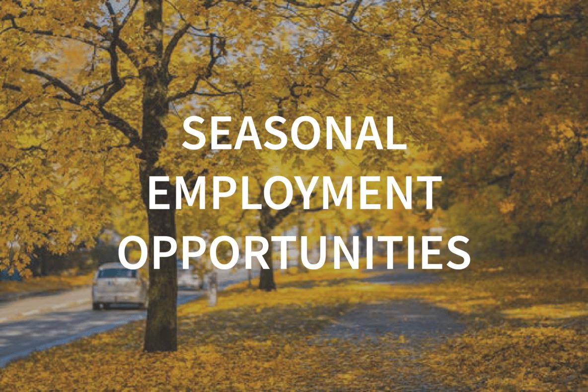seasonal employment, temporary jobs